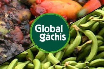 global-gachis