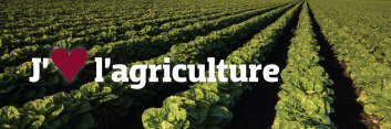 photo-agriculture