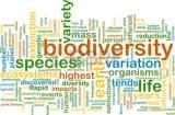 Biodiversité : pour une discriminationpositive